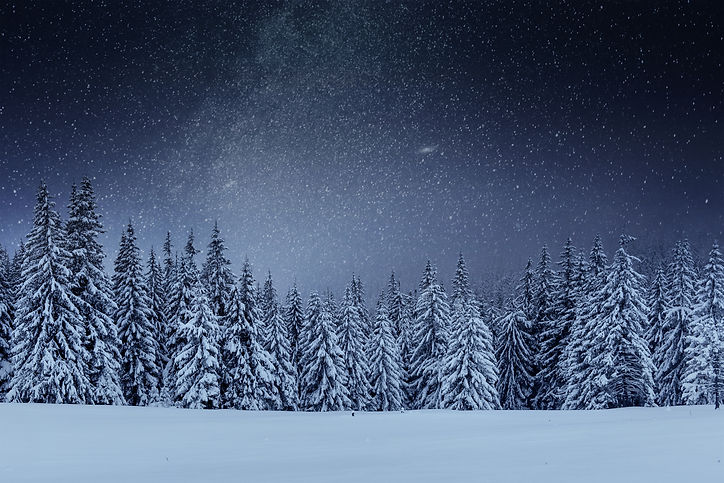 dairy-star-trek-winter-woods-dramatic-pi