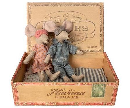 Mama und Papa Maus in Zigarrenschachtel
