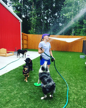 Time for a cool down at our dog daycare center!