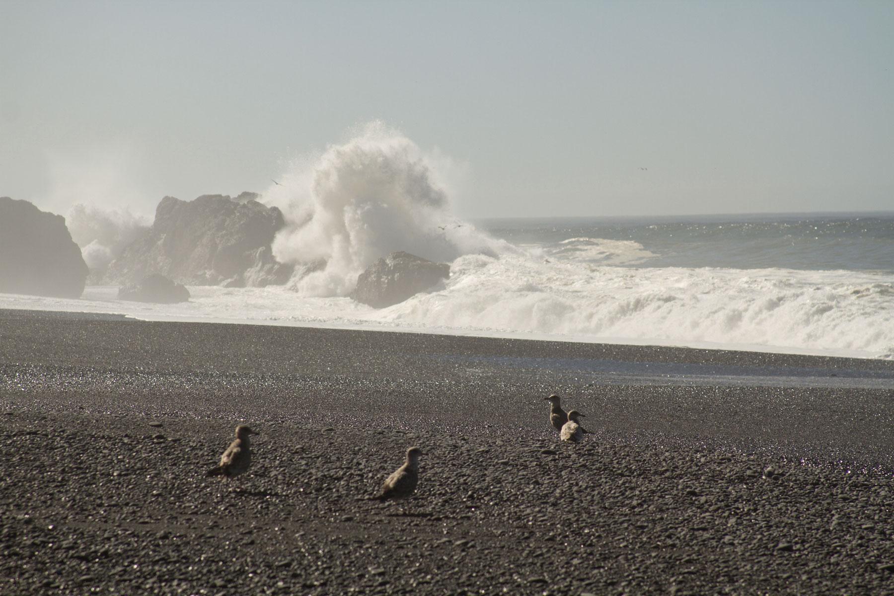 The lost coast, California