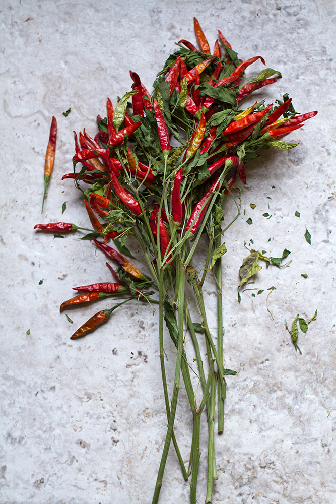 bouquet of Red Chilies