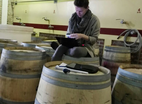 A County Winemaker at Large, in Patagonia, Argentina