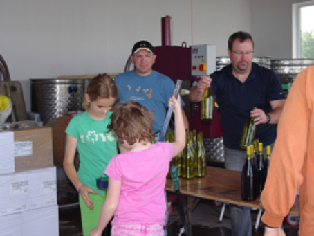 First Vintage:  Hand Bottling at Sugarbush Vineyards