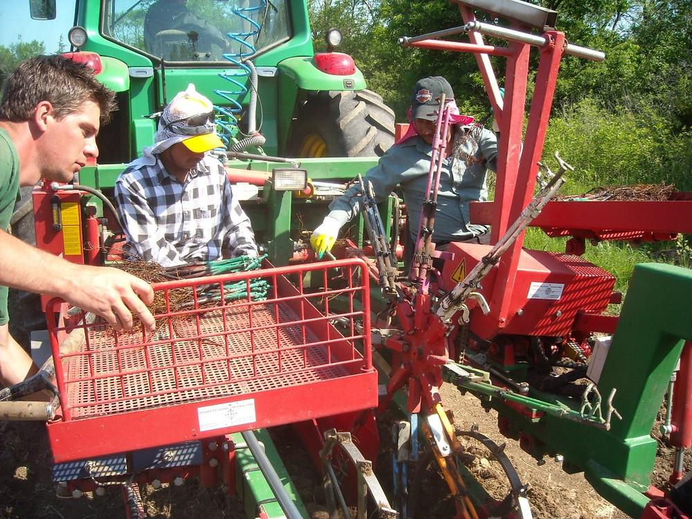 Planting Machine 2010