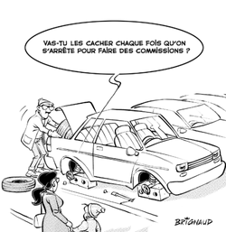 Vol pneu