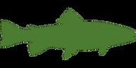 Fisch Grün.png