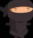 ninja-2.png