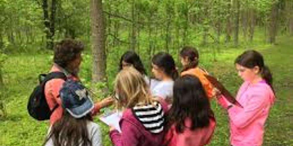 Kid-Friendly Nature Hike
