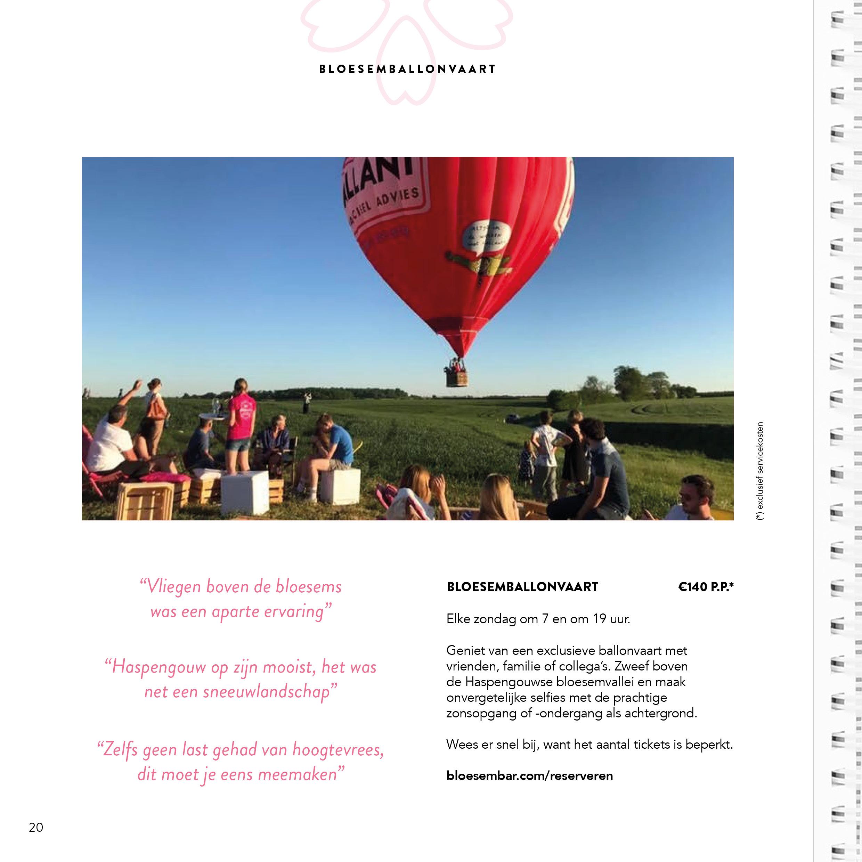 Bloesembar_menu_21x21cm_V120
