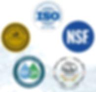 CWS Logos.JPG