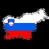 slovenski-grb.png