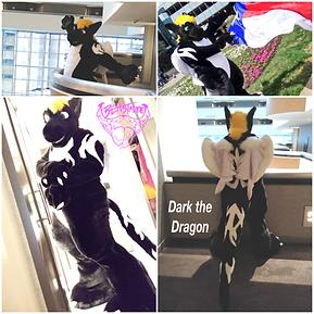 darkdragon.png