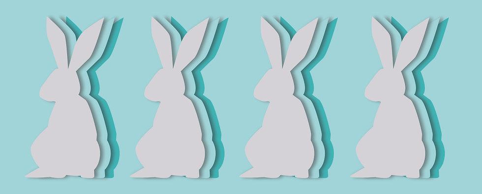 bunnyback-03.jpg