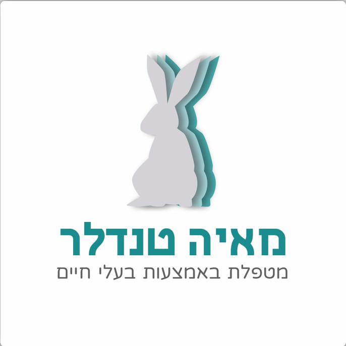 לוגו מאיול-02.jpg
