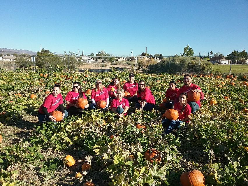 Wells Fargo volunteers in pumpkin patch.
