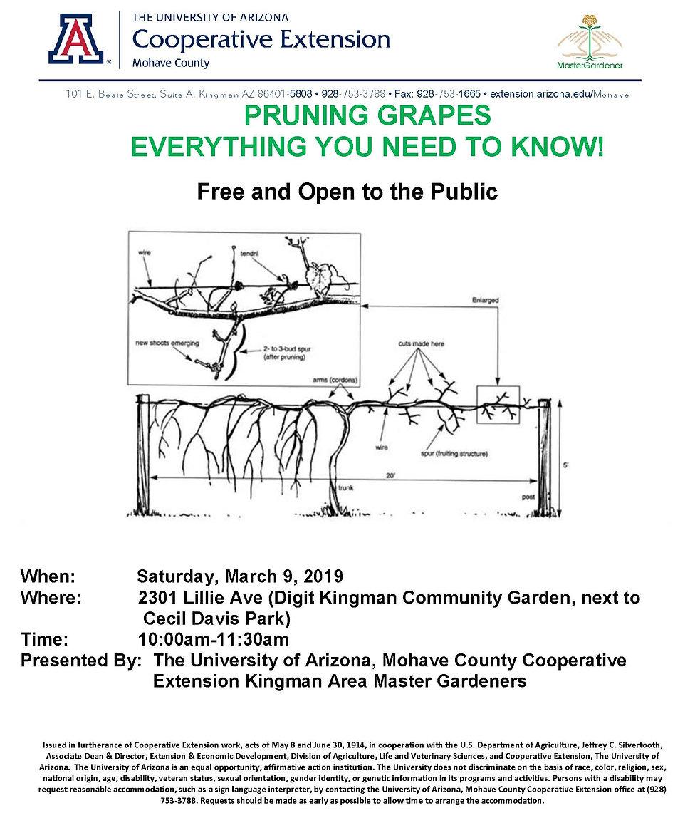 Grape Vine Pruning Workshop Flyer Mar 20