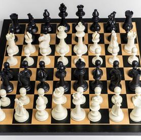 ajedrez (13).jpg