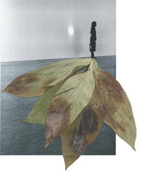 2021-gemma anton-boek visual-1000-persona_9_enero_2013.jpg