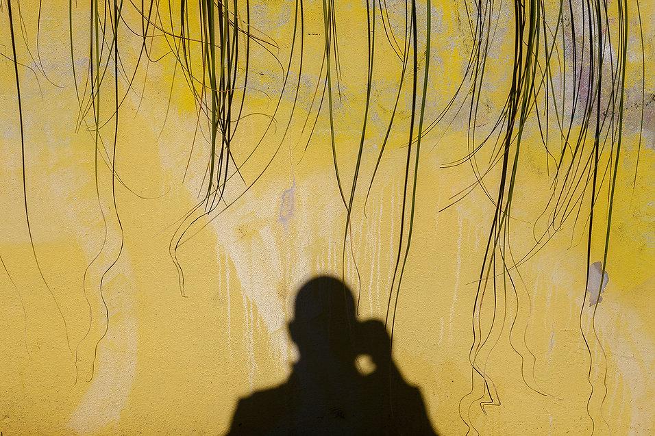 Miguel Angel Blanco, boek visual