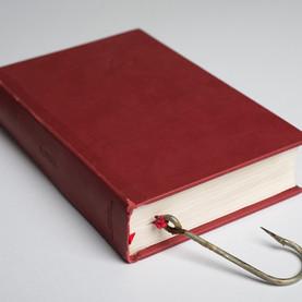 libro (6).jpg