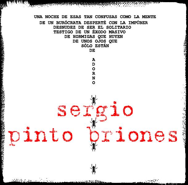 Sergio Pinto Briones