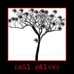 Raúl Gálvez