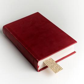 libro (7).jpg