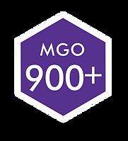 LOGO 900 MGO.png