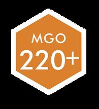 LOGO 220 MGO.png