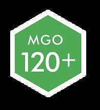 LOGO 120 MGO.png