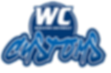 wc-customs-logo.png