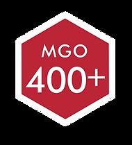 LOGO 400 MGO.png