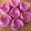 Thumbnail: Petals & Strawberries - Flowers (35g Bag)