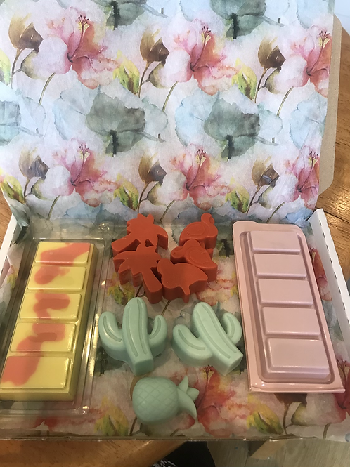 Monthly Melts Subscription Box