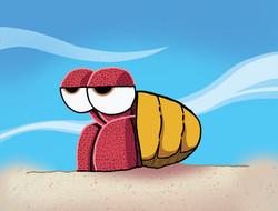 Hermit Crabs (Now in Color!!!)