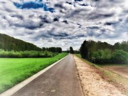 Rheindeich bei Dormagen