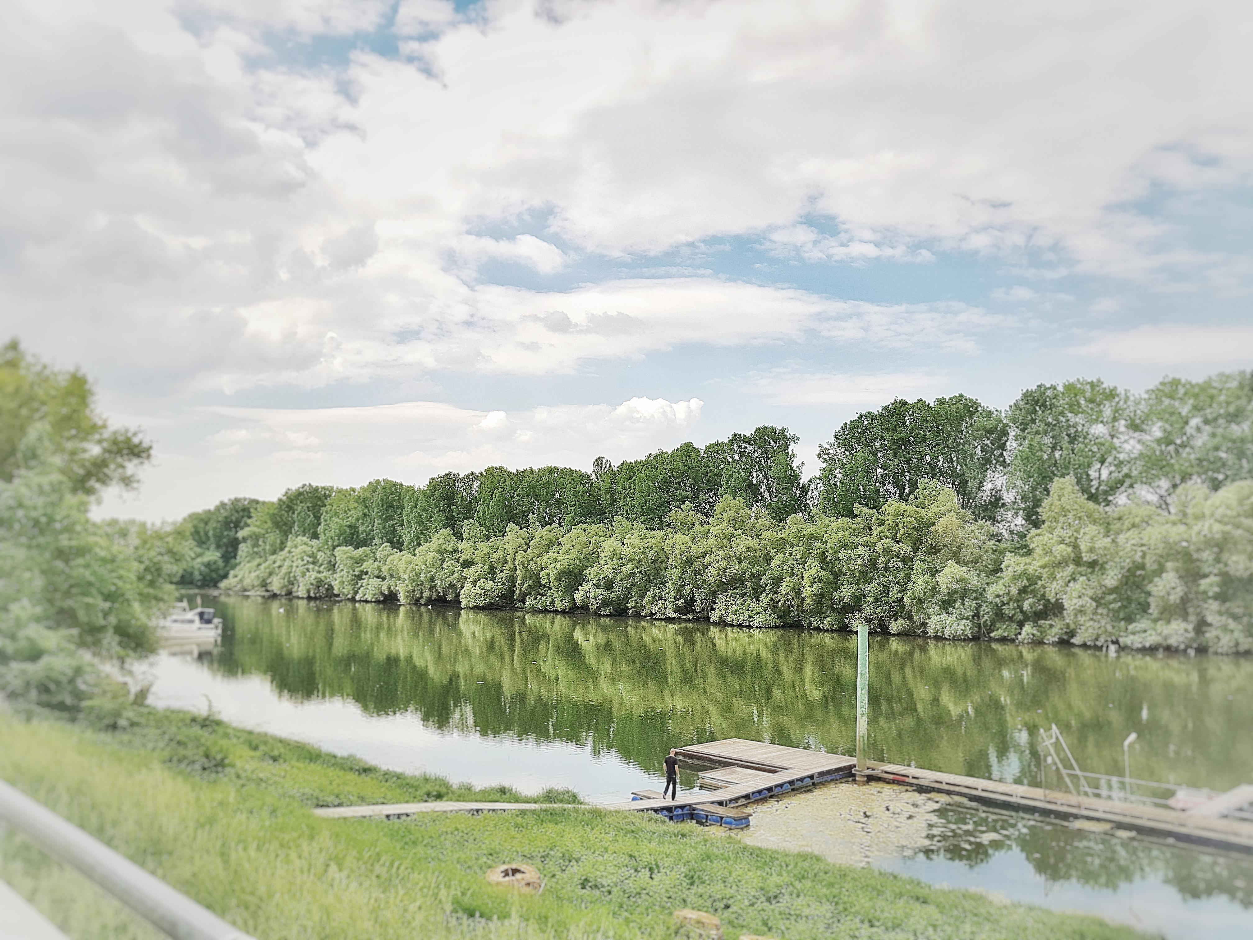 Altrhein II