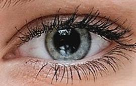 Healthy Eye.jpg
