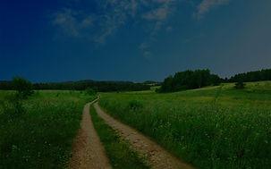 scenic-dirt-road-in-spring_edited.jpg
