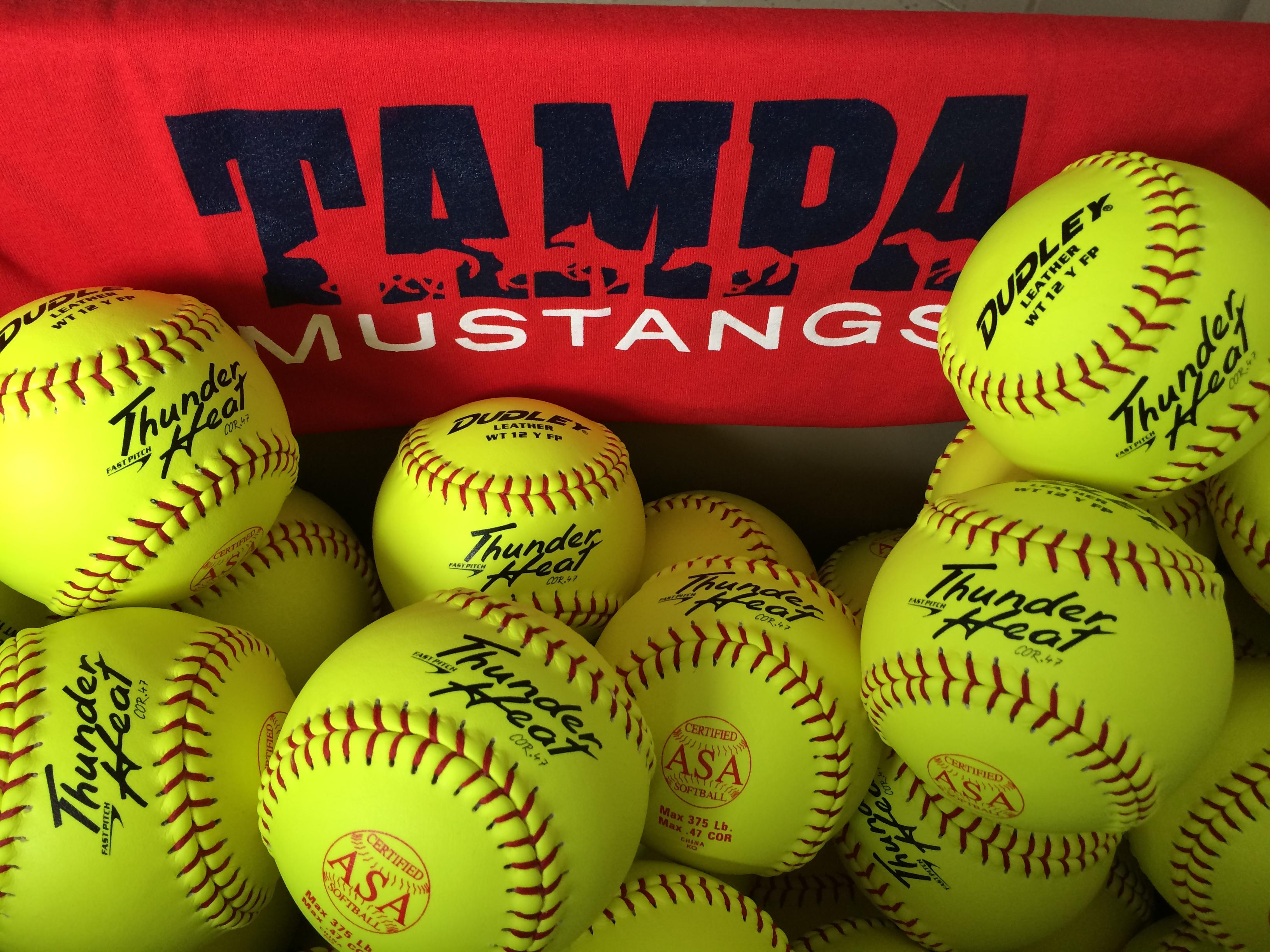 Mustangs Logo with softballs.jpg