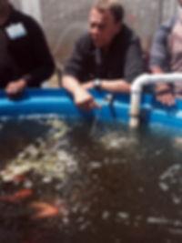 aquaponics.jpg