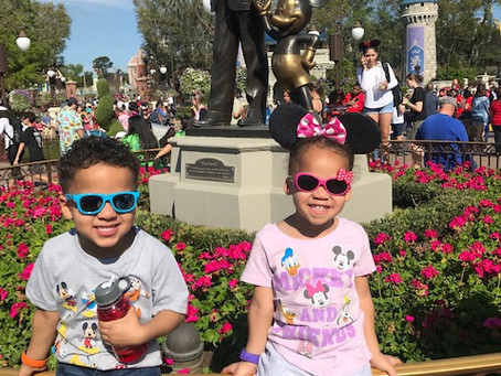 WDW with Toddlers: What You Need to Know