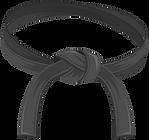 master-black-belt (1).png