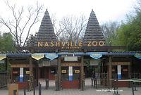 Nashville Zoo - Soloman