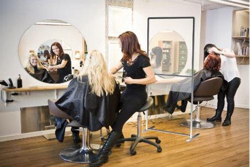 Hair Salon Divider