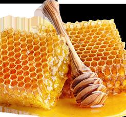 miel-liquide 1.png