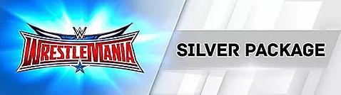 Silver32.jpg