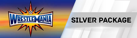 Silver33.png