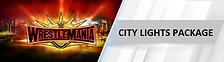 CITYLIGHTS35.png