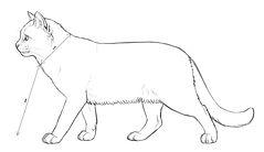 drawn-cat-head-388482-604524.jpg